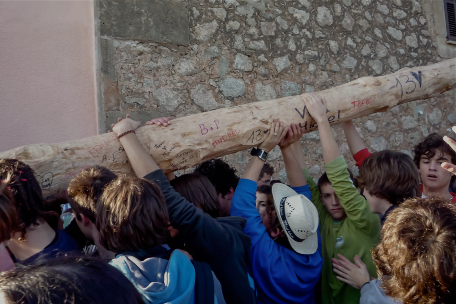Pi de Sant Antoni1